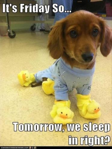 its-friday-so-tomorrow-we-sleep-in-right