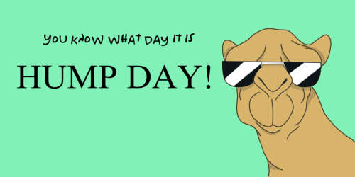 happy_hump_day__by_bkreation-d6qq3xf